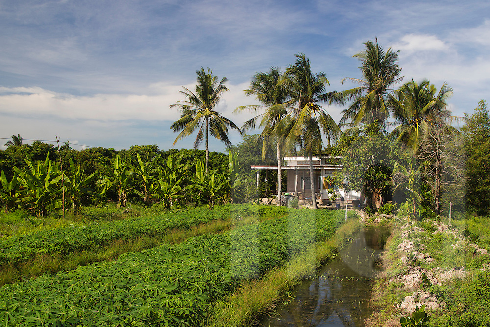 Isolated dwelling in Cai Lay countryside, Vietnam, Southeast Asia