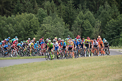 04.07.2017, Pöggstall, AUT, Ö-Tour, Österreich Radrundfahrt 2017, 2. Etappe von Wien nach Pöggstall (199,6km), im Bild das Feld im Anstieg jasenegg // the peleton climbs the Jasenegg during the 2nd stage from Vienna to Pöggstall (199,6km) of 2017 Tour of Austria. Pöggstall, Austria on 2017/07/04. EXPA Pictures © 2017, PhotoCredit: EXPA/ Reinhard Eisenbauer
