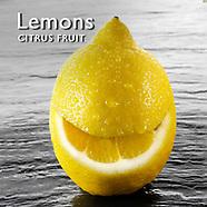 Lemons Photos Lemon Food Pictures Image Fotos Photography