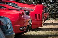 Ferrari rear ends  - Custom Cars & Coffee November 2014