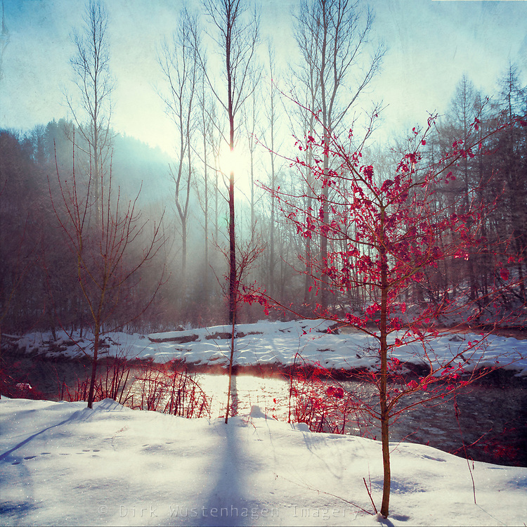Winter morning at river Wupper/ Germany - textured photograph