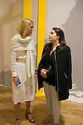 ALINA KOHLEN; KARINE HAIMO, Yto Barrada's Faux Guide , Pace Gallery. Burlington Gardens. London. 25 June 2015