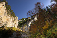 Limestone rocks in Valea Padina lui Calinet, National Park Piatra Craiului, Transylvania, Southern Carpathians, Romania