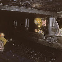 In preparation for blasting, underground coal miners in Spitsbergen, Norway place roof braces in a one meter thick seam deep under and arctic mountain.