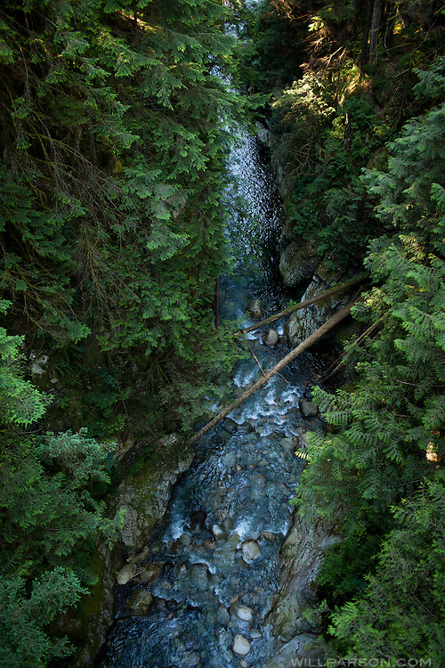 Lynn Canyon Park in North Vancouver, British Columbia, Canada.