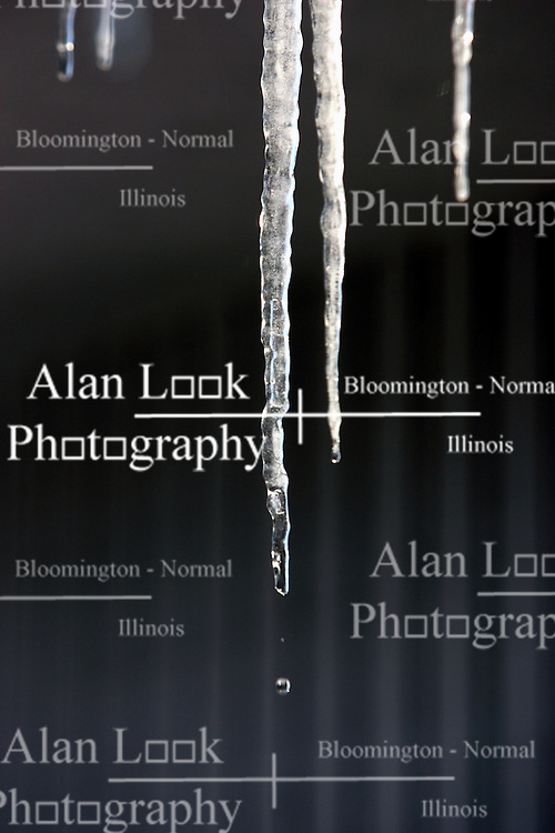 18 February 2007: Less than a week after the latest major snow storm hit the Midwest, icicles in suburban Bloomington Illinois start to form and then melt signaling the beginning of the thaw.
