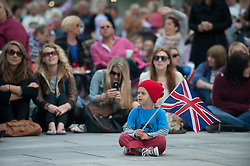 Plymouth, UK  29/04/2011. The Royal Wedding of HRH Prince William to Kate Middleton. A boy waves a Union Jack as the wedding unfolds. Photo credit should read London News Pictures. Please see special instructions. © under license to London News Pictures