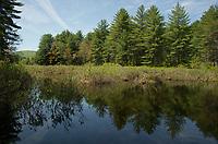 Kayaking on Lake Wicwas.  ©2019 Karen Bobotas Photographer