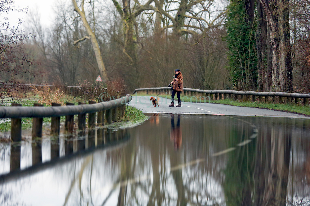 04 February 2021. Le Blanc Pignon, Pas de Calais, France.<br /> Record flooding from the Canche river inundates roads surrounding the town of Le Blanc Pignon in Pas de Calais in north western France. A dog walker stops to take photos on her phone.<br /> Photo©; Charlie Varley/varleypix.com<br /> All rights managed.