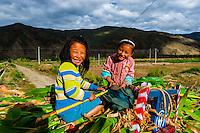 Girls atop a load of just harvested corn, Qonggyai, Lhoka (Shannan) Prefecture, Tibet (Xizang), China.