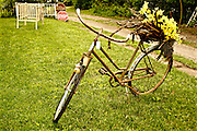 Northcentral Pennsylvania, Aged bike at antique shop, Potter Co., PA USA