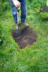 Checking soil profile by digging an inspection hole. Step 2 Excavate the soil to a depth of 30cm