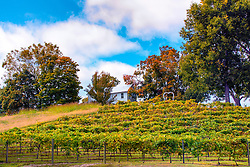 Defiance, Missouri has so many wineries and around Autumn you can really capture the beauty of these wineries through the eye of a camera.