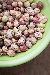 Borlotti beans in a green bowl