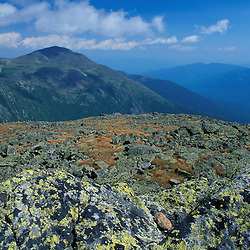 Summit of Mt. Jefferson. On the Appalachian Trail. Lichens. Mt. Adams in distance. Presidential Range.  White Mountain N.F., NH