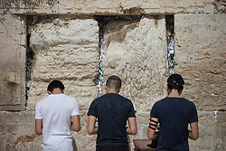 © Licensed to London News Pictures . 05/06/2016 . Jerusalem , Israel . People pray at the Western or Wailing Wall . Israeli Jews celebrate Jerusalem Day . Photo credit : Joel Goodman/LNP