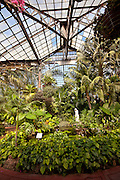 Lincoln Park Conservatory and Botanical Garden Chicago, IL.