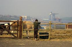 Boy at Bill Quay City Farm Newcastle upon Tyne UK 1987