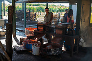 A worker controls the press that prepares Guayaba pulp during the process of making Guyaba bars (Florida, Camagüay Province, Cuba).
