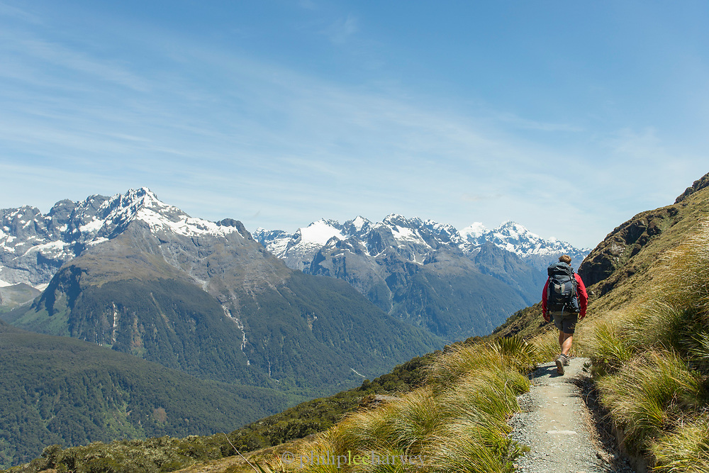 Rear view of one person hiking along the mountainside on the Routeburn Track, South Island, New Zealand