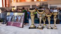 11.10.2015 Bialystok woj podlaskie Miedzynarodowa Wystawa Kotow Rasowych N/z puchary fot Michal Kosc / AGENCJA WSCHOD