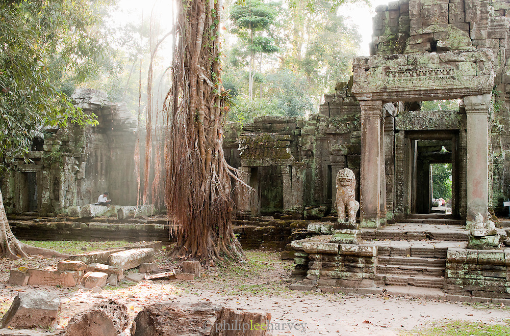 A local man sits reading a book in a temple at Angkor, Siem Reap Province, Cambodia