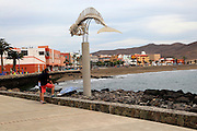 Whale skeleton, common beaked whale at seafront, Gran Tarajal, Fuerteventura, Canary Islands, Spain