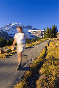 Hiker on the Skyline Trail in Paradise Park, Mount Rainier National Park, Washington