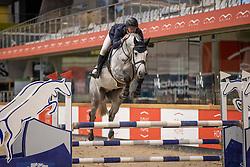 Vermeiren Dieter, BEL, Chouchou Jvh Z<br /> Pavo Hengsten competitie - Oudsbergen 2021<br /> © Hippo Foto - Dirk Caremans<br />  22/02/2021