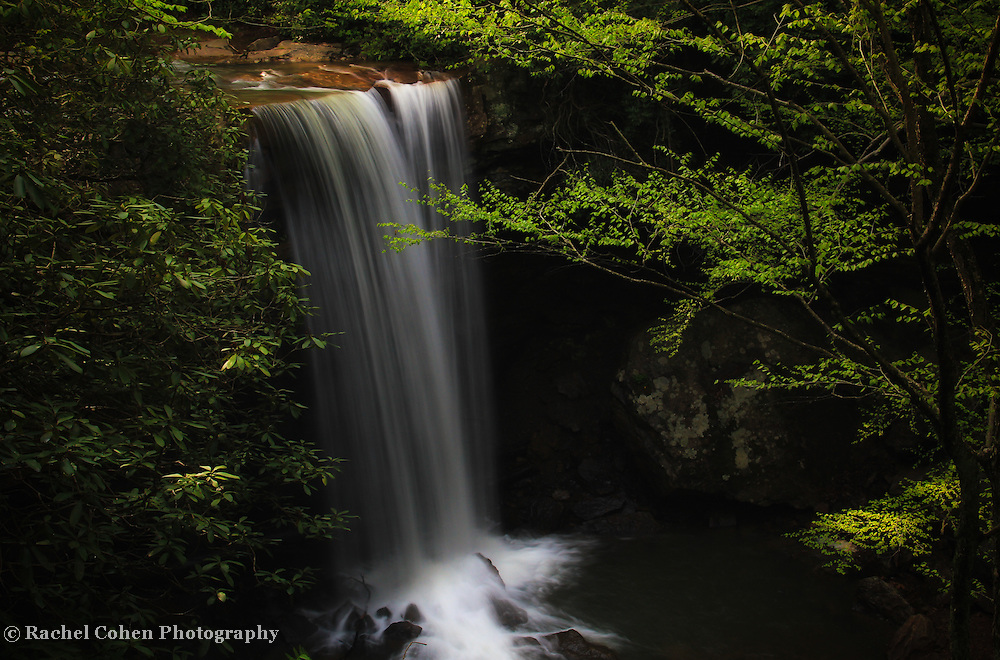 """""""Dreamy Cucumber Falls""""<br /> <br /> Enjoy a dreamy scenic waterfall in the forest!!<br /> <br /> Waterfalls by Rachel Cohen"""