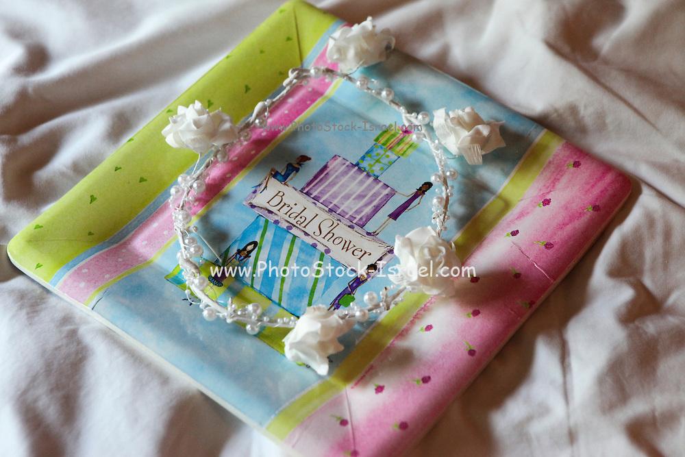 Bridal Shower Wedding decoration
