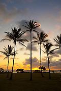 Sunrise, Wailua River State Park, Kauai, Hawaii