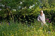 Wildflower meadow, A gardener in wildflower meadow, Wiltshire, England, UK, model Henry Kilbey