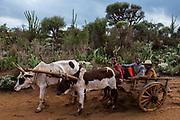 Local people<br /> South Madagascar<br /> MADAGASCAR