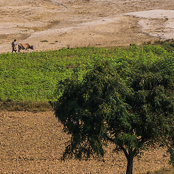 It's said that Myanmar has the most favorable agricultural conditions in all of Asia. Agriculture is the backbone of the Myanmar economy: the sector accounts for about 30% of GDP, over 50% of total employment. This image shows the rural area life in the near of Monywa Tonwship