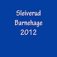 sleiverud_2012
