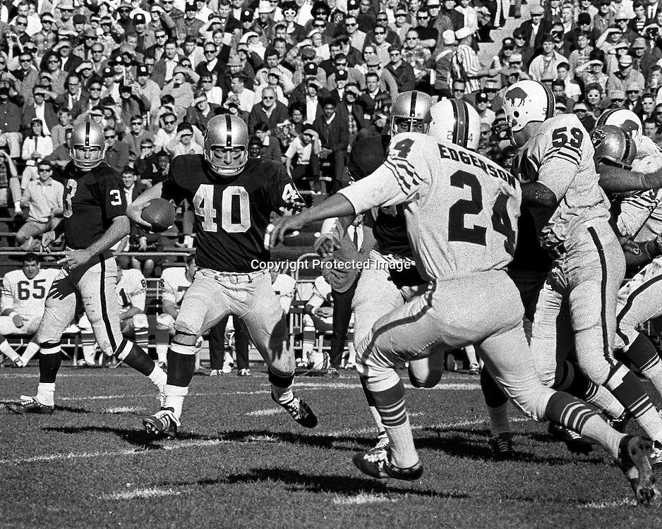 Oakland Raiders Pete Banazak runs after handoff from Daryle Lamonica. Raiders vs Buffalo Bills.<br />(photo by Ron Riesterer)