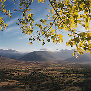 Peloponnese valley landscape. Autumn leaves and far mountains seen on the roadside near Levidi, between Tripolis and Argos. The 29th modern Olympic circus came home to Greece in 2004 and the birthplace of athletics was among the woodland of Ancient Olympia where for 1,100 continuous years, the ancients held their pagan festival of sport and debauchery. The modern games share many characteristics with its ancient counterpart. Corruption, politics and cheating interfered then as it does now and the 2004 Athens Olympiad will echo both what was great and horrid about the past..