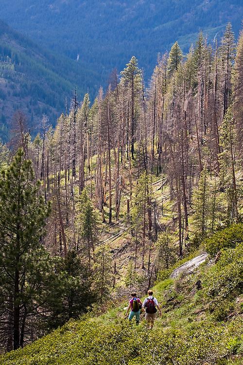 Hikers walk down the Icicle Ridge Trail outside Leavenworth in the Alpine Lakes Wilderness, Washington.