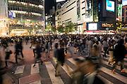large crowd walking on the zebra crossing in Shibuya