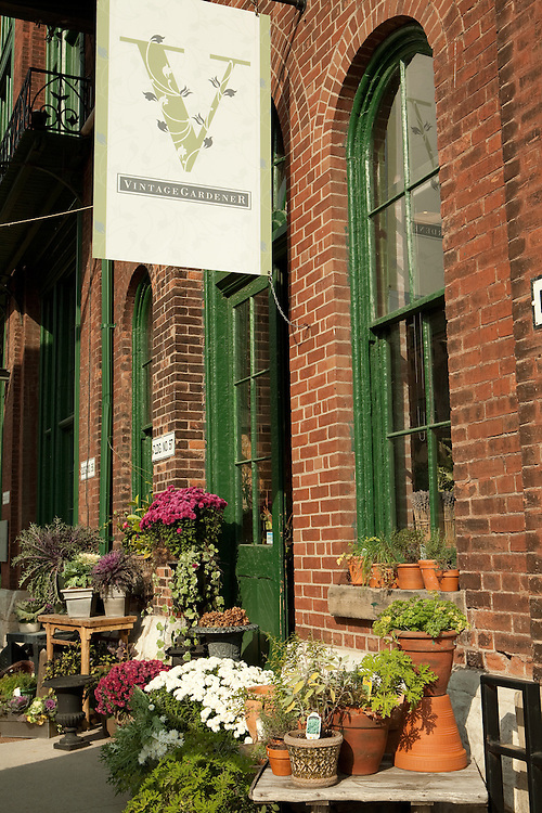 Potted flowers outside the Vintage Gardener in Toronto's Distillery District