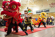 KungFu Dragon USA students perform during the Chinese New Year celebration at the Great Mall of the Bay Area in Milpitas, California, on February 13, 2016. (Stan Olszewski/SOSKIphoto)