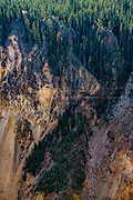 Images from Yellowstone