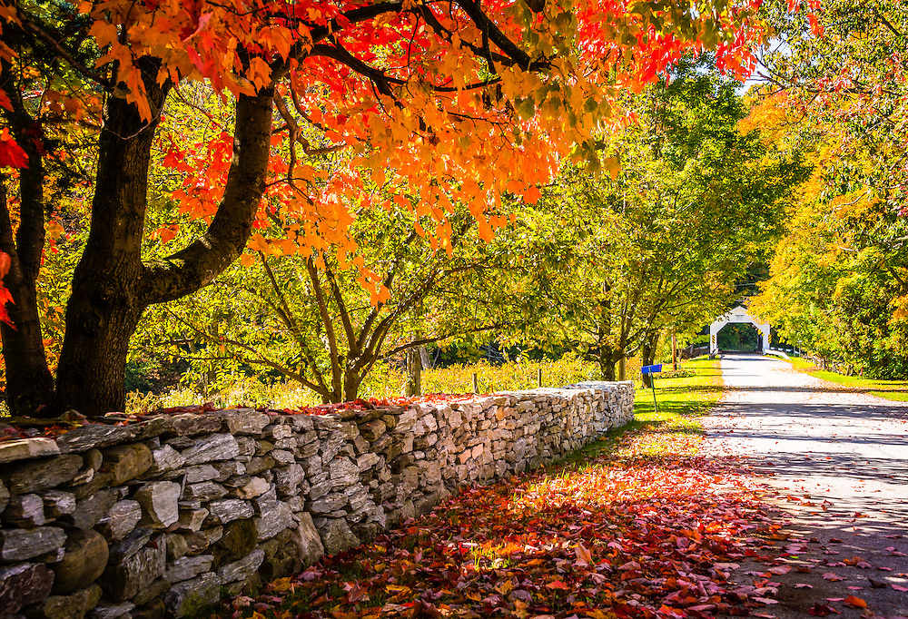 Fall leaves bedeck a stone wall and lane leading to a covered bridge in Vermont.