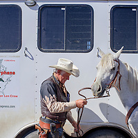 032615       Cable Hoover<br /> <br /> Len Crow grabs the reins of his horse as he prepares to ride out of camp south of Sanders Thursday. Crow is riding 6,800 miles from Alaska to Mexico to raise funds for an orphanage in Guadalajara.