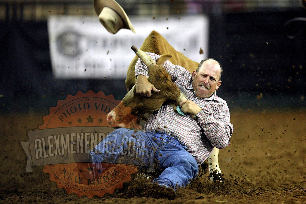 Brett Laameier steer wrestles during the 129th performance of the PRCA Silver Spurs Rodeo at the Silver Spurs Arena   on Friday, June 1, 2012 in Kissimmee, Florida. (AP Photo/Alex Menendez) Silver Spurs rodeo action in Kissimee, Florida. PRCA rodeo event in Florida. The 129th annual running of the cowboy event.