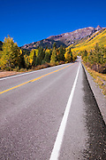 Fall aspens along the San Juan Skyway over Red Mountain Pass, Uncompahgre National Forest, Colorado USA