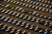 Seen from the air at dawn, dozens of F-4 Phantom fighters from the Cold War-era are laid out in grids across the arid desert at Davis-Monthan Air Forbe Base near Tucson Arizona. These retired aircraft whose air frames are too old for flight are being stored then recycled, their aluminium worth more than their sum total at this repository for old military fighter and bomber aircraft. They sit in neat rows in low light, their shadowy wings are blue in colour but their fuselage are stripped of markings, being taped up against the dust. This is a scene of once-great flying machines relegated to sad scrap, long-after the Soviet Union's own demise when western armies fought a war of propaganda.