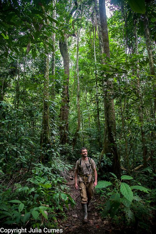 A man walks through Peruís Amazon Jungle.