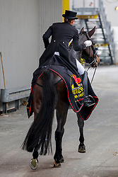 MÜLLER Lisa (GER), Gut Wettlkam's Stand By Me Old<br /> Stuttgart - German Masters 2019<br /> Siegerehrung<br /> Preis der Firma Stihl<br /> Int. Dressurprüfung - CDI4*<br /> Aufgabe: FEI Grand Prix 2009, Rev. 2014<br /> Qualifikation zum Grand Prix Special<br /> 16. November 2019<br /> © www.sportfotos-lafrentz.de/Stefan Lafrentz